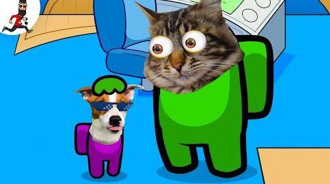 Видео Собака vs Кот ❤ Амонг Ас (смешная анимация) @ЛОКИ БОБО